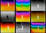 Armasight Prometheus 336 3-12X50 (60 Hz) Warmtebeeldkijker_